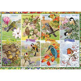 Falcon Deluxe Seasonal Garden Birds Jigsaw Puzzle (1000 Pieces)