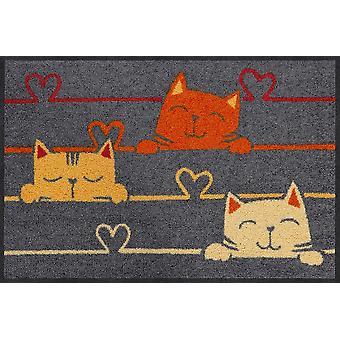 Salon lion foot mat of 50 x 75 cm cat lines washable dirt mat