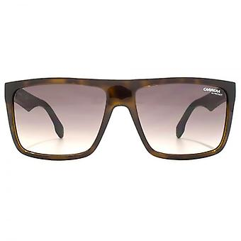 Carrera 5039 Sunglasses In Havana Matte Black