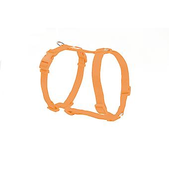 Freedog Orange Basic Harness Nylon (Dogs , Collars, Leads and Harnesses , Harnesses)