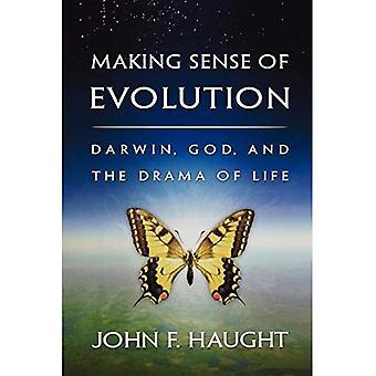 Der Sinn der Evolution: Darwin, Gott und das Schauspiel des Lebens
