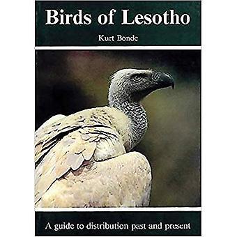 Vogels van Lesotho: A Guide to distributie verleden en heden