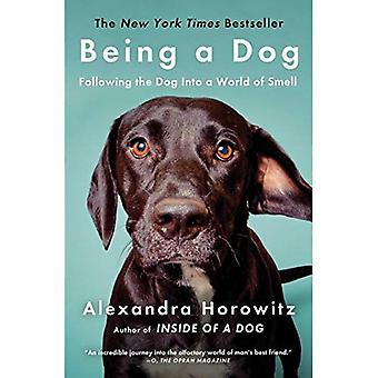Being a Dog: Following the� Dog Into a World of Smell