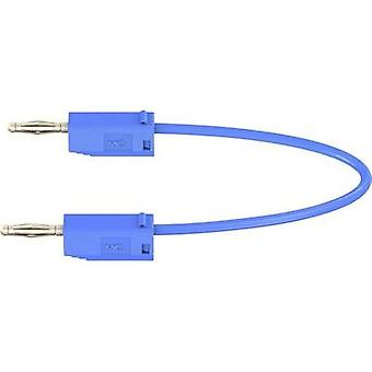 Test lead [ Banana jack 2 mm - Banana jack 2 mm] 0.15 m Blue St