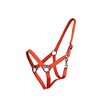 QHP Adjustable Orange Full Bridle