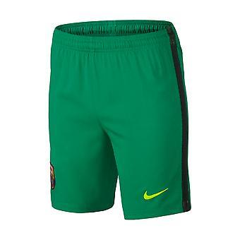 2016-2017 Barcelona Home Nike Goalkeeper Shorts (Lucid Green) - Kids
