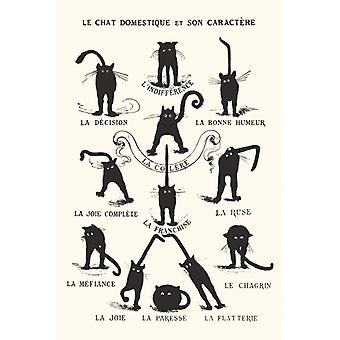 Le Chat Domestique Poster Print Black Cats Poster Poster Print