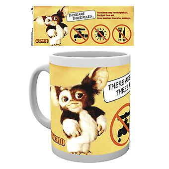 Gremlins Three Rules Boxed Drinking Mug