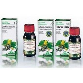 Specchiasol Melissa Officinalis 50Ml 17 Tm. AgBio