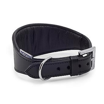 Ancol Pet Products Heritage Buckle Fasten Padded Whippet Collar