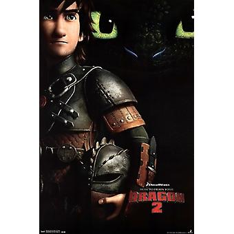 Dreamworks How to Train Your Dragon 2 - Hiccup & Toothless Poster Print