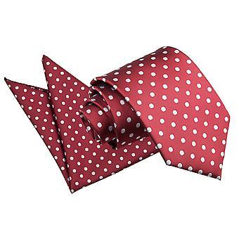 Bourgondische Polka Dot Tie & zak plein Set
