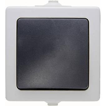 Kopp Circuit breaker, Toggle switch Nautic Grey 565656001