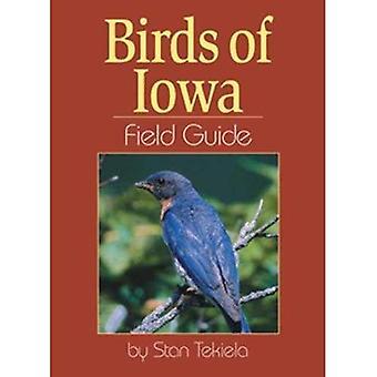 Birds of Iowa Field Guide (Field Guides)
