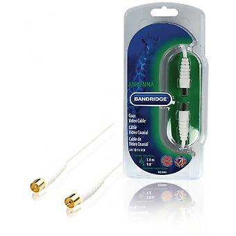 Bandridge-Digital Coax Cable