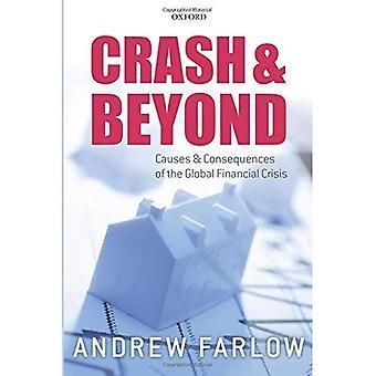 Absturz und darüber hinaus: Ursachen und folgen der globalen Finanzkrise