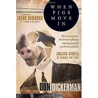 När grisar flyttar