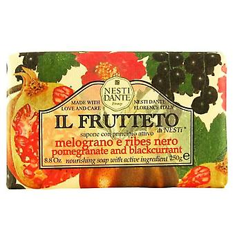Nesti Dante Il Frutteto Pomegranate And Blackcurrant Jabón 250 gr