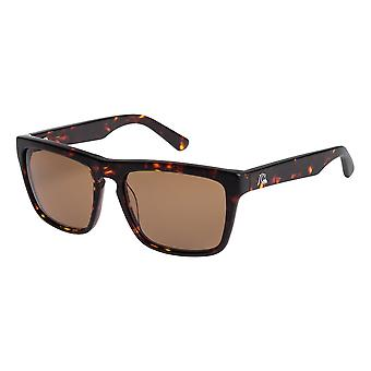 Quiksilver Ferris Modern Originals Sunglasses - Brown Havana
