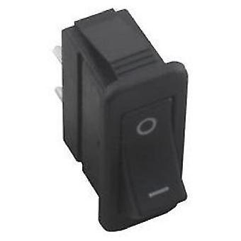 Raypak 009493F Rocker Switch R185B-R405B