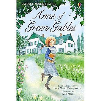 Anne fra Bjørkely (unge lesing 3)