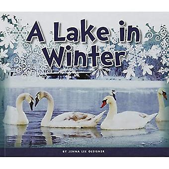 A Lake in Winter (Welcome,� Winter!)