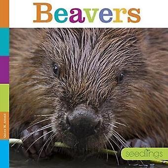 Seedlings - Beavers by Quinn M Arnold - 9781628324808 Book