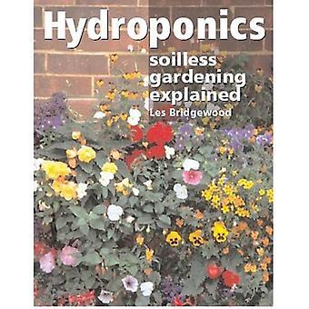 Hidroponía: Jardinería hidropónicos explicó
