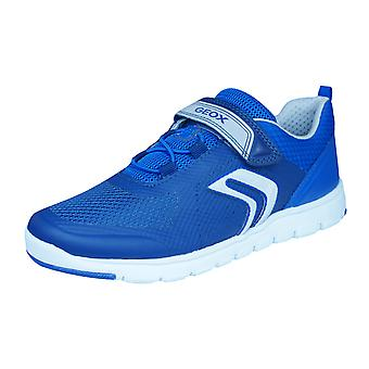 Geox J Xunday B Boys Hook and Loop Trainers / Shoes - Navy Blue