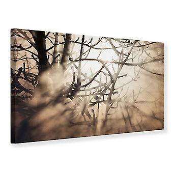 Canvas Print Branches Into Fog Light