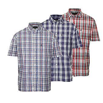 Champion Mens Beverley Casual Short Sleeve Shirt (Pack of 3)