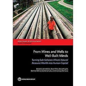 Från gruvor och brunnar till välbyggda sinnen: Turning subsahariska Afrikas naturresurs rikedom i Human kapitalet (riktningar i utveckling-mänsklig utveckling)