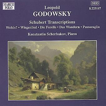L. Godowsky - Godowsky: Schubert Transcriptions [CD] USA import