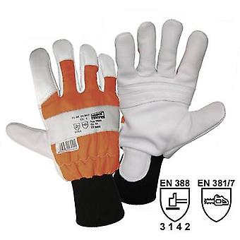 worky 1604 Size (gloves): 10, XL