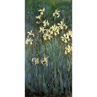 Gele irissen, Claude Monet, 80x40cm
