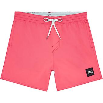 O'Neill Quick Dry Volley Shorts ~ Vert pink