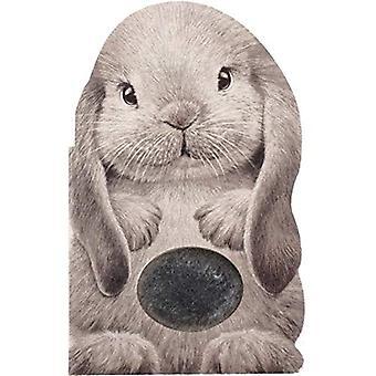 Furry Bunny (Mini Friends Touch & Feel) [Board book]