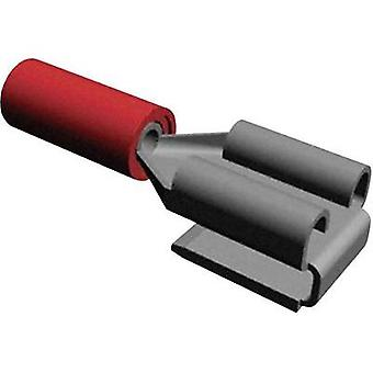 Blade receptacle + branch joint Connector width: 6.3 mm Connector thickness: 0.8 mm 180 ° Partially insulated Red TE Con