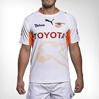 PUMA Cheetahs (Rugby) Super Rugby Jersey [white]