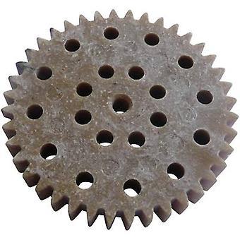 Wood, Plastic Cogwheel Modelcraft Module Type: 1.0 No. of teeth: 40 1 pc(s)