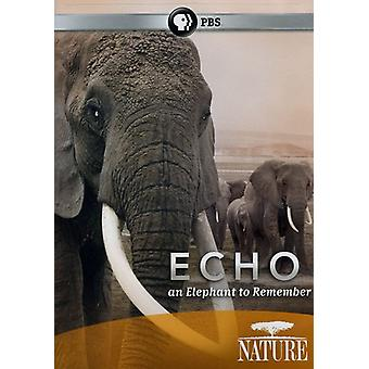 Nature - Echo: An Elephant to Remember [DVD] USA import