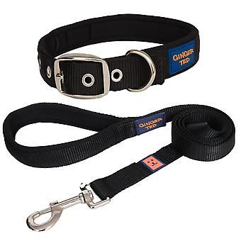 Ginger Ted High Quality Padded Strong Nylon Dog Collar & Lead Value Pack Black (3 sizes)