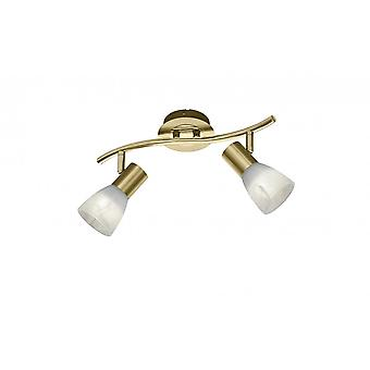 Trio Lighting Levisto Modern Brass Matt Metal Spot