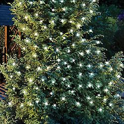 Sparkle - 50 leidde zonne-buiten Party String Fairy Kerstverlichting - wit