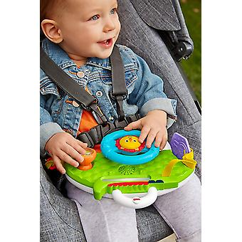 Fisher-Price Rolling and Strolling Dashboard