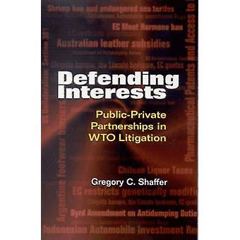 Interessen - öffentlich-Private Partnerschaften in der WTO Prozessführung durch