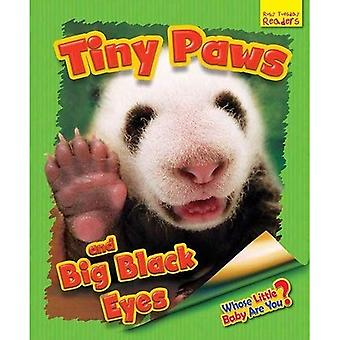 Whose Little Baby are You?: Finy Paws and Big Black Eyes