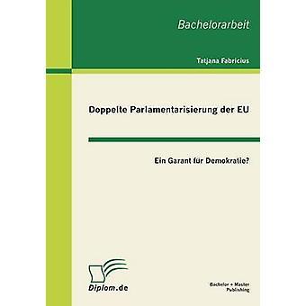 Doppelte Parlamentarisierung Der Eu Ein Garant Fur Demokratie by Fabricius & Tatjana