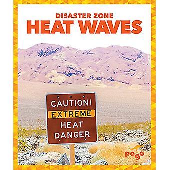Heat Waves by Vanessa Black - 9781620315644 Book