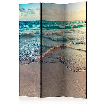 Room Divider - Beach in Punta Cana [Room Dividers]